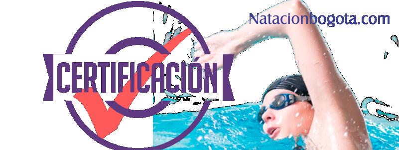 Certificados natación Proceso de incorporación